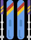 domain-logo-ski